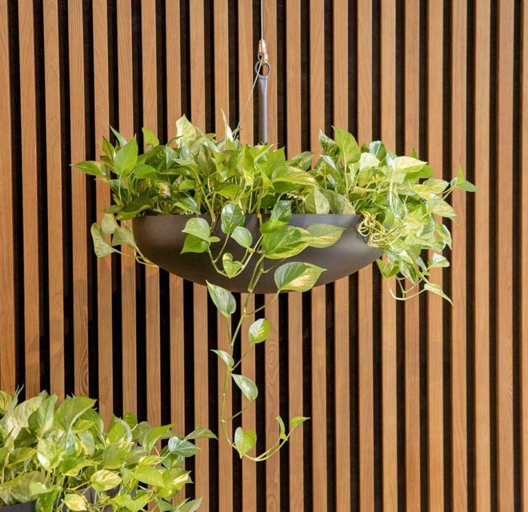Pflanzenschalen auf Maß